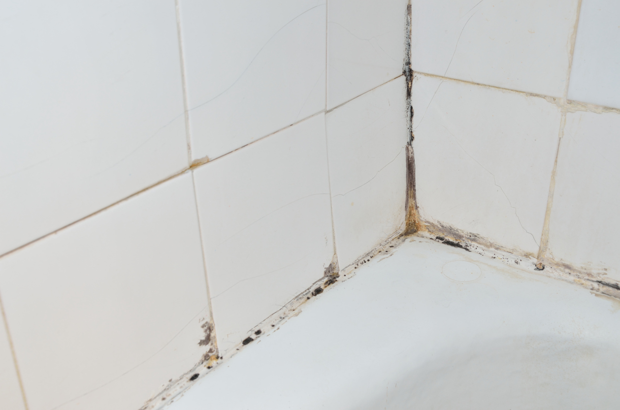 Understanding How To Remove Black Mould From Bathroom ...